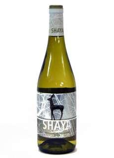Belo vino Shaya