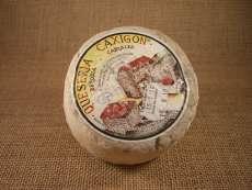 Sir Caxigon